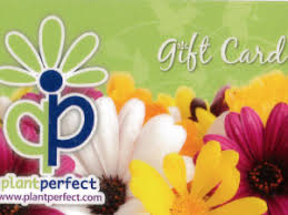 Flowers In Bismarck Nd - greenhouse nursery u0026 garden store bismarck nd plant perfect