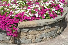 curved garden wall u2013 exhort me