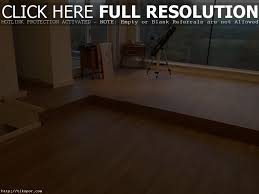Steam Cleaners For Laminate Wood Floors Steam Clean Hardwood Floors Review Tags 51 Unusual How To Clean