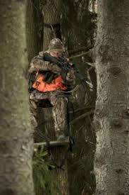 hunting lights for ar 15 how to set up an ar 15 for hunting guns and shooting realtree