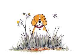 Radio Collar For Beagle Barklife Beagle U2013 Page 3 U2013 Life Lessons From A Dog