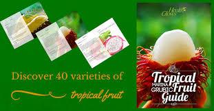 jungle fruits borneo marina grubic