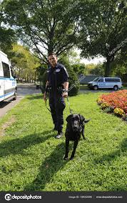 counter terrorism bureau nypd counter terrorism bureau k 9 officer and k 9