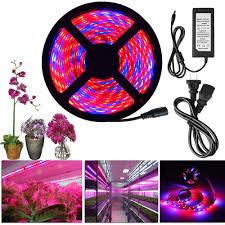 12v dc led grow lights led grow light full spectrum dc 12v 5050 aquarium greenhouse plant