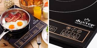 Magnetic Cooktop 8 Best Induction Burners And Cooktops Of 2017 Portable Single