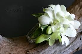 orchid wrist corsage white orchid wrist corsage adam s garden florist