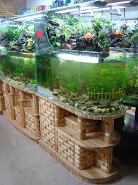 furniture fabulous fish tank room divider with coral aquarium and