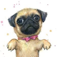 cute pug puppy painting by olga shvartsur