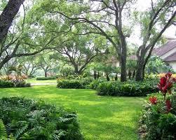 Florida Backyard Ideas Inspirational Florida Front Yard Landscaping Pictures Interior
