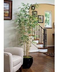 amazing artificial living room plants home design planning photo
