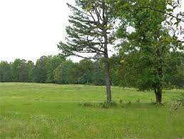 Land For Sale Comfort Texas Best 25 Texas Land For Sale Ideas Only On Pinterest Texas Land