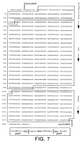 patent us7285700 plastid directed dna constructs comprising