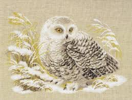 snowy owl designs snowy owl design available on t shirts