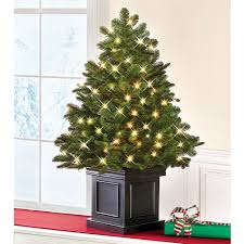 fraser fir christmas tree the world s best tabletop prelit fraser fir hammacher schlemmer