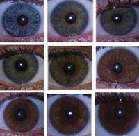 does your eye color