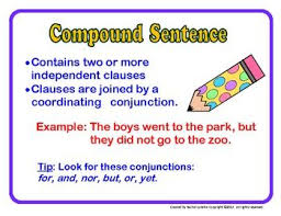 21 best simple compound and complex sentences images on