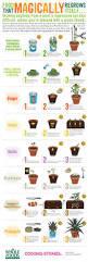 25 best edible garden ideas on pinterest plants by post