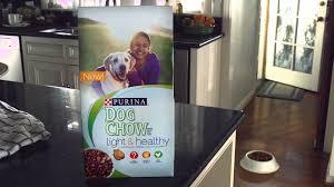 purina light and healthy light healthy dog food purina dog chow youtube