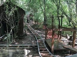 roller coaster for backyard georgia teen builds custom backyard roller coaster over 5 years