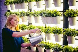 Indoor Garden Decor - best diy indoor garden decoration ideas blog di arredamento e