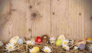 easter backdrops backdrops props tagged easter backdrops gear store