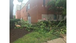 Weatherbug Backyard Oh Hail It Is One Nasty Storm Photo Gallery Pahomepage
