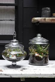diy glass terrarium nesting with grace