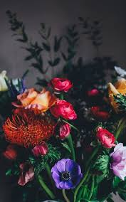 flowers images flowers images download free images on unsplash