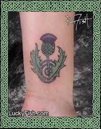 thistle magic u2014 luckyfish inc and tattoo santa barbara