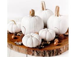 Interior House Decoration Ideas Amazing Halloween Decorating Ideas For Your Modern Home