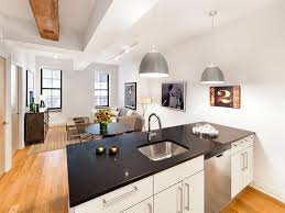 Low Income One Bedroom Apartments Cheap Brooklyn Apartments Rent Affordable Studio For In Nyc