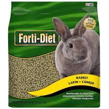 rabbit food kaytee forti diet rabbit food