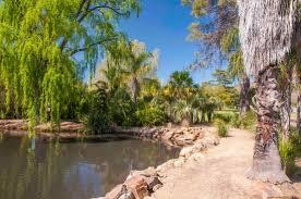 Wagga Wagga Botanical Gardens Japanese Garden 1 Picture Of Wagga Wagga Botanic Gardens Wagga