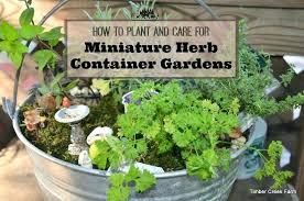 indoor herb gardens herb garden in container container gardens indoor herb garden