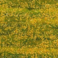 Architecturals Cotton Fabric Floral Fabric Danscapes Natural Architecturals