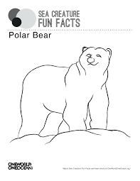 pourapp page 41 polar bear pictures to color printable airplanes