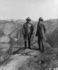 environmental history wikipedia