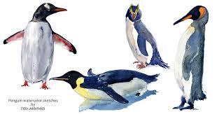penguin sketches image penguin sketch stock illustration image