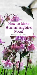 89 best put a bird on it images on pinterest bird houses