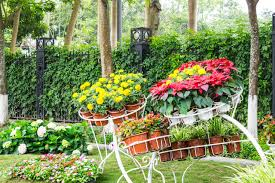 container gardening ideas for spectacular container gardening nourish the planet