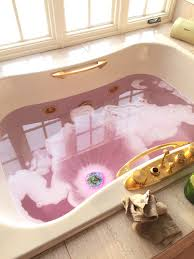 Pink And Gold Bathroom by Top 25 Ideas About Bath Time On Pinterest Detox Baths Christmas