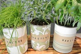 Table Top Herb Garden Herb Garden Ideas For Indoor Spaces That Will Inspire You