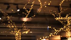 people who hang christmas lights tree christmas light illuminate on shopfront and restaurant glass