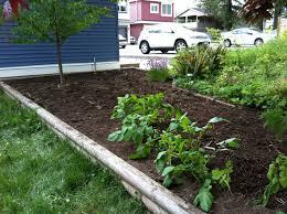 how to plant a vegetable garden garden ideas