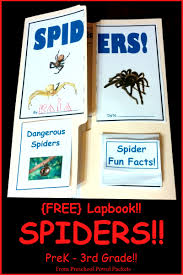 free spider lap book preschool powol packets