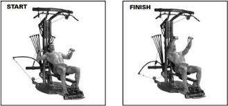 Bench Press Program Chart Best Bowflex Exercises The Complete Guide