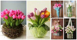tulip arrangements posts with tulip arrangements tag top dreamer