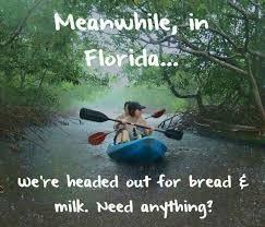 Florida Rain Meme - florida memes the sunshine state home pinterest memes and humor