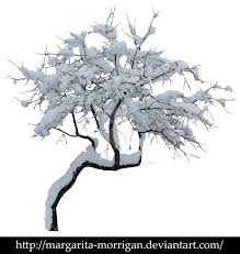margarita drawing winter tree 1 by margarita morrigan on deviantart