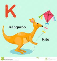 animal alphabet k kangaroo stock vector image 7596546